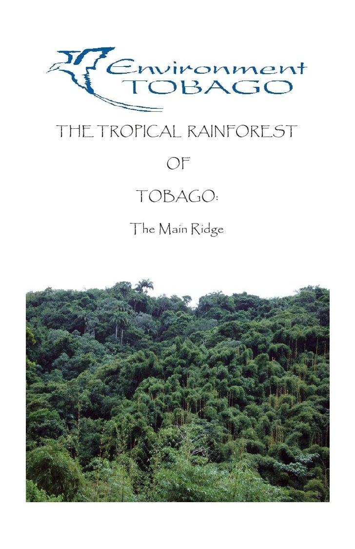 THE TROPICAL RAINFOREST              OF         TOBAGO:         The Main Ridge