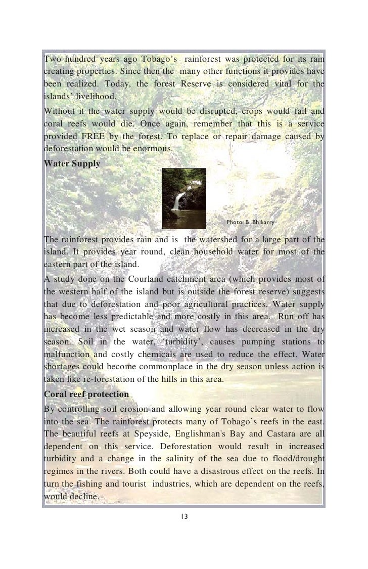 Nice Rainforest Food Word Scramble Free English Worksheets Ks2 Games ...