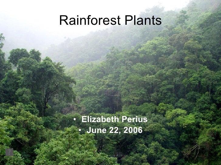 Rainforest Plants <ul><li>Elizabeth Perius </li></ul><ul><li>June 22, 2006 </li></ul>