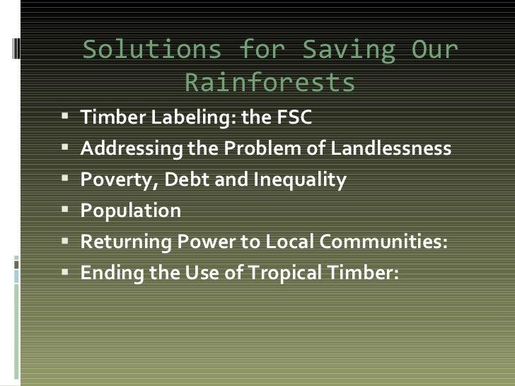 Rainforest powerpoint[1]