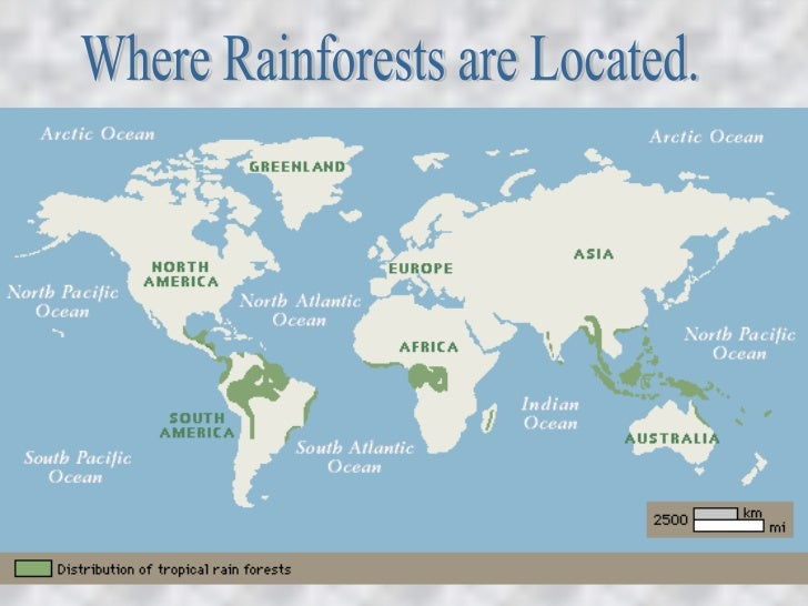Where Rainforests are Located.
