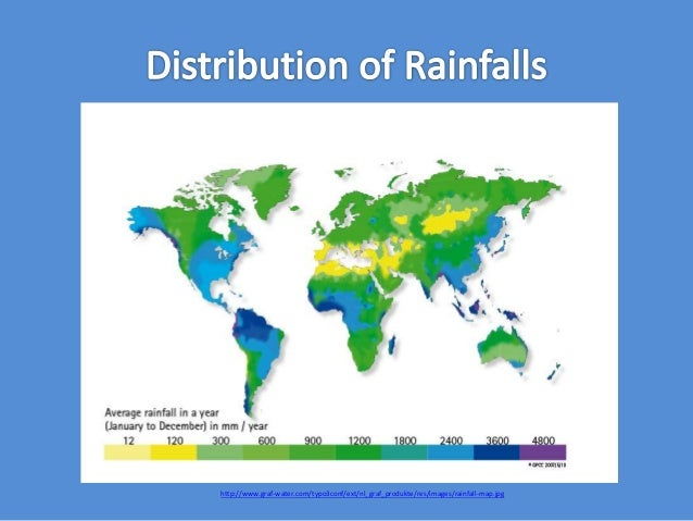 a summary of the importance of tropical rainforests and its effects on the world A few examples of animal adaptations in the world's tropical rainforests are lesson summary tropical rainforests are wet and warm tropical rainforest animal.