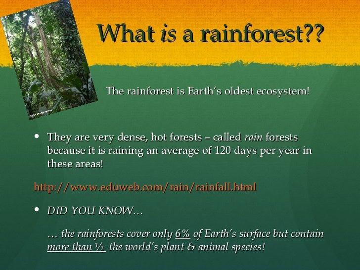 Rainforest powerpoint doritrcatodos rainforest powerpoint toneelgroepblik Gallery
