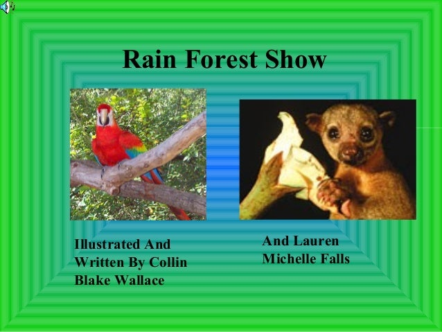 Rain Forest Show Illustrated And Written By Collin Blake Wallace And Lauren Michelle Falls
