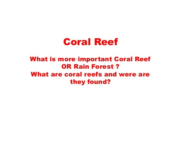 Coral Reef What is more important Coral Reef OR Rain Forest ? What are coral reefs and were are they found?
