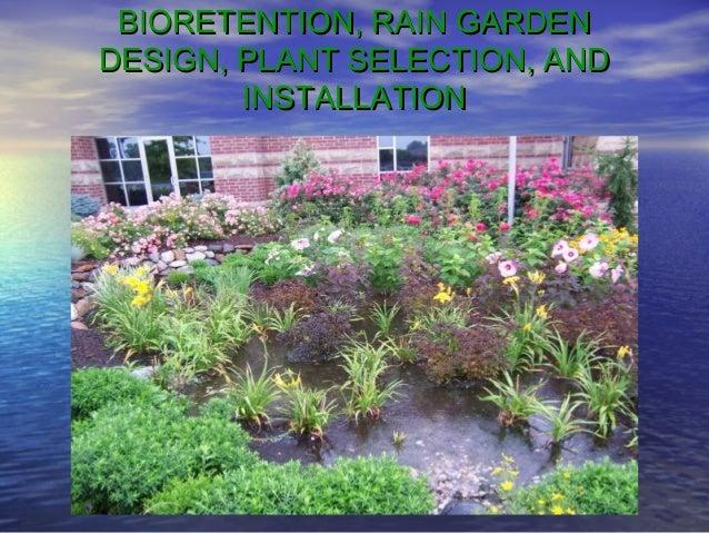 Rain gardens and bio retention for Home rain garden design