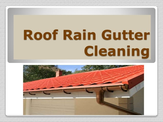 Roof Rain Gutter Cleaning