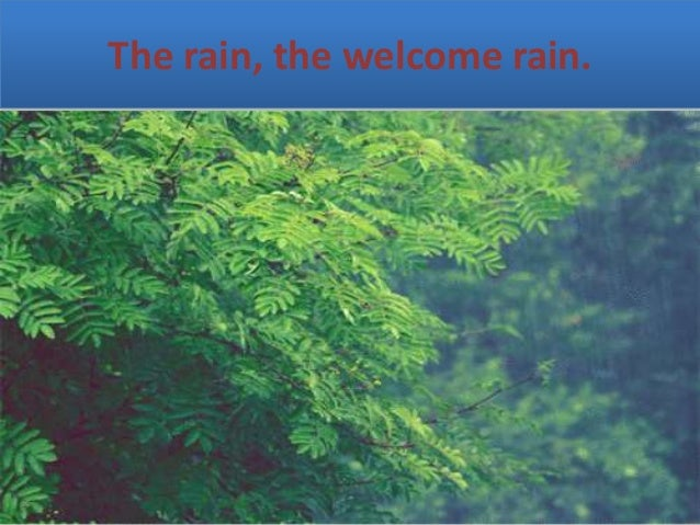 poem analysis summer rain A poem - my books i'd fain cast off, i cannot read, 'twixt every page my thoughts go stray at large, down in the meadow, where is richer feed.