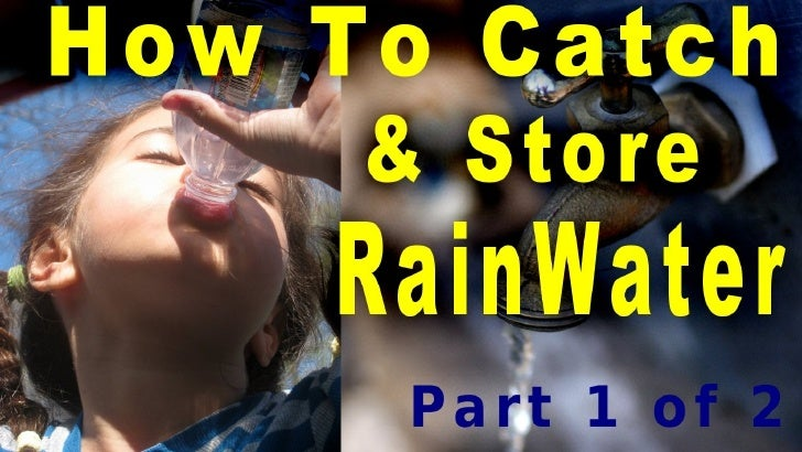 How to Catch & Store Rainwater