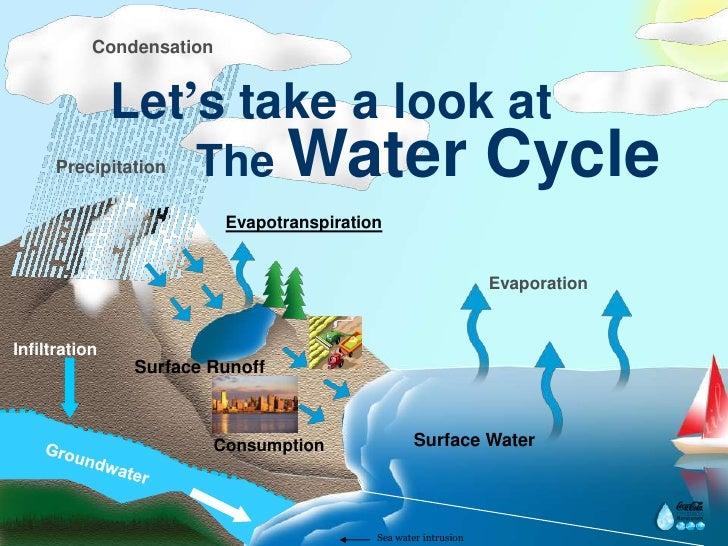 Rainwater Harvesting Ccrt Dr Reddy 2