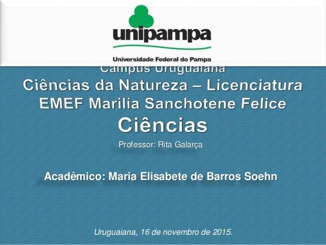 Professor: Rita Galarça Acadêmico: Maria Elisabete de Barros Soehn Uruguaiana, 16 de novembro de 2015.