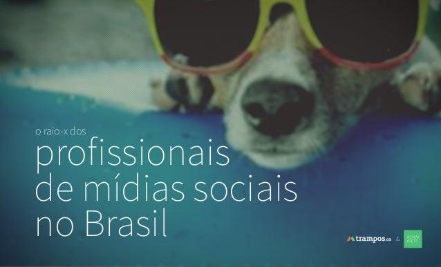 o raio-x dos profissionais de mídias sociais no Brasil &