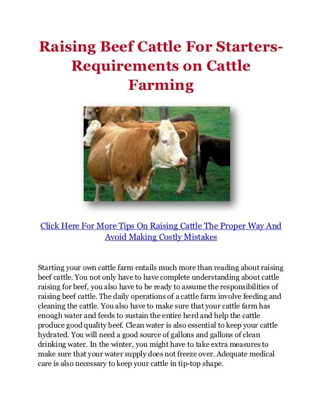 Raising Beef Cattle For Starters-    Requirements on Cattle           FarmingClick Here For More Tips On Raising Cattle Th...