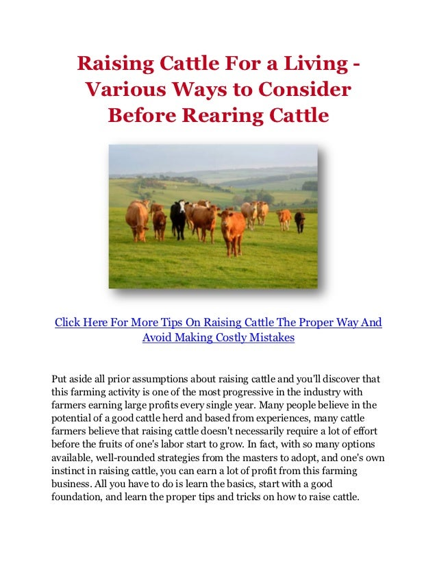 Raising Cattle For a Living -      Various Ways to Consider        Before Rearing CattleClick Here For More Tips On Raisin...