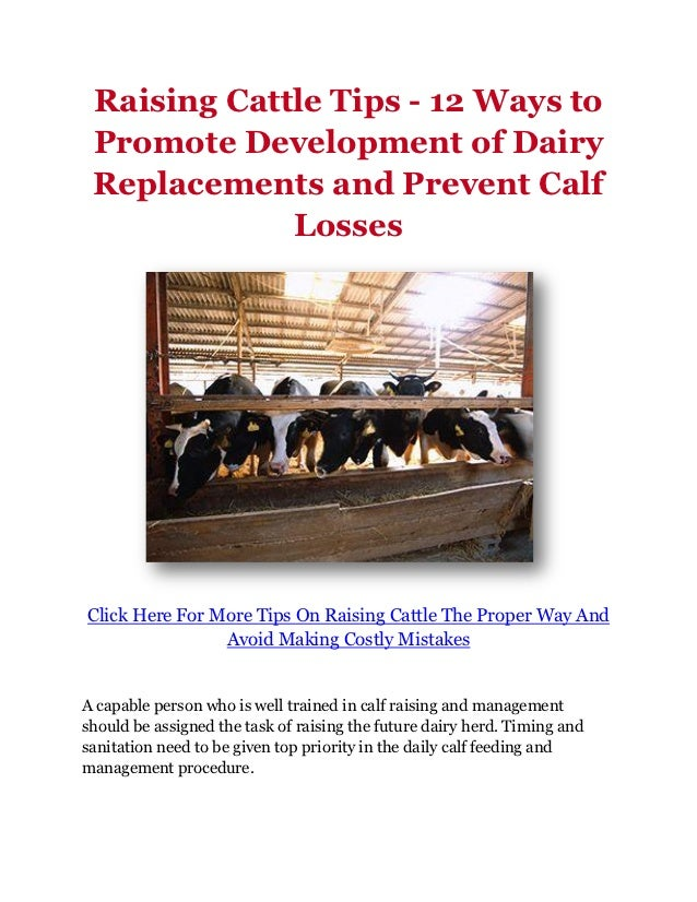 Raising Cattle Tips - 12 Ways to Promote Development of Dairy Replacements and Prevent Calf             LossesClick Here F...