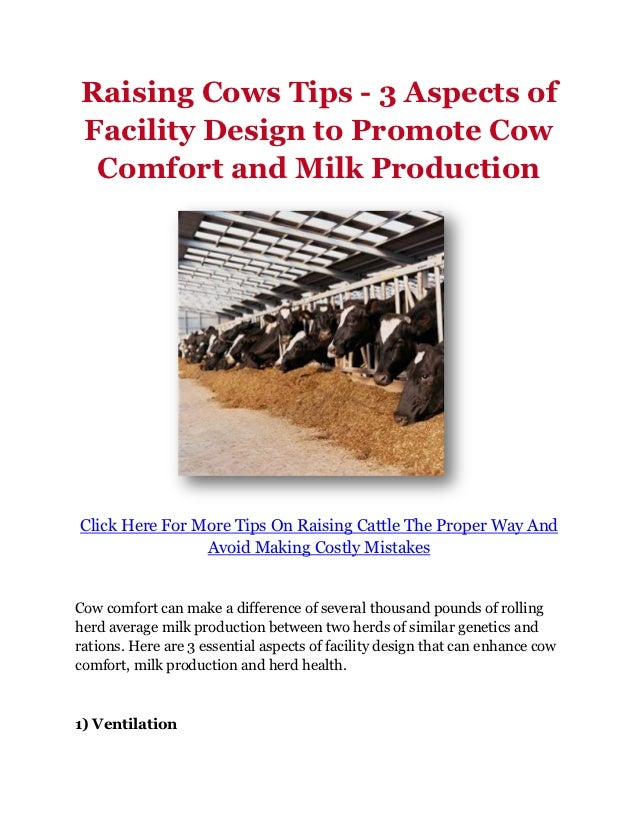 Raising Cows Tips - 3 Aspects ofFacility Design to Promote Cow Comfort and Milk ProductionClick Here For More Tips On Rais...
