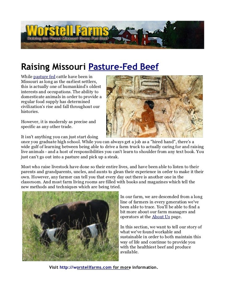 Raising Missouri Pasture-Fed BeefWhile pasture fed cattle have been inMissouri as long as the earliest settlers,this is ac...