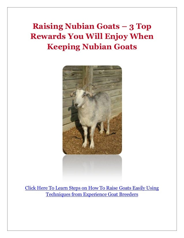 Raising Nubian Goats – 3 Top  Rewards You Will Enjoy When     Keeping Nubian GoatsClick Here To Learn Steps on How To Rais...