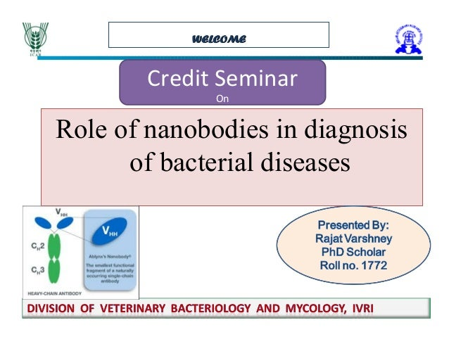 WELCOMEWELCOME Credit Seminar On Role of nanobodies in diagnosis of bacterial diseases