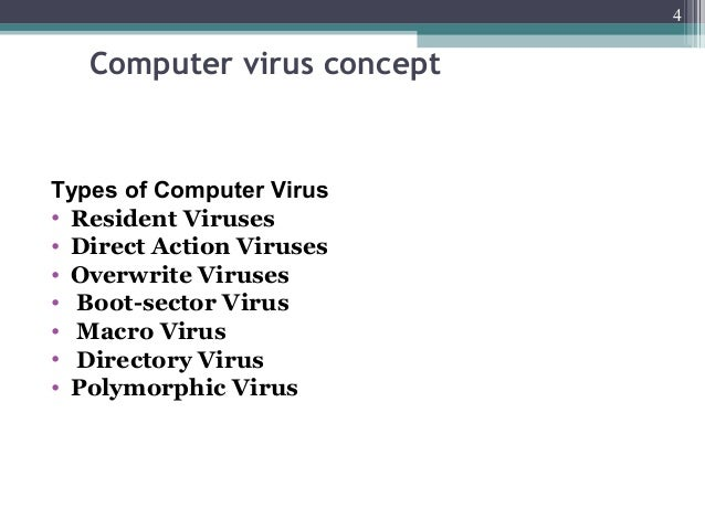 what is a computer virus my science school