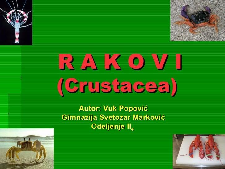 RAKOVI(Crustacea)    Autor: Vuk PopovićGimnazija Svetozar Marković       Odeljenje II4