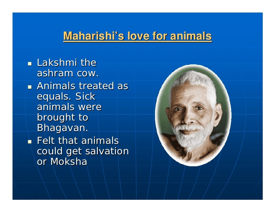 His love for animals                      Favorite cow Lakshmi    Believed that animals also can reach salvation