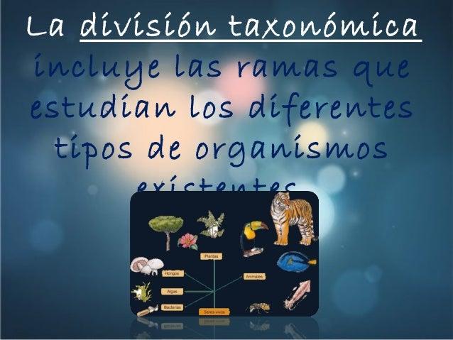 Ramas de la Divisin Taxonmica de la Biologa