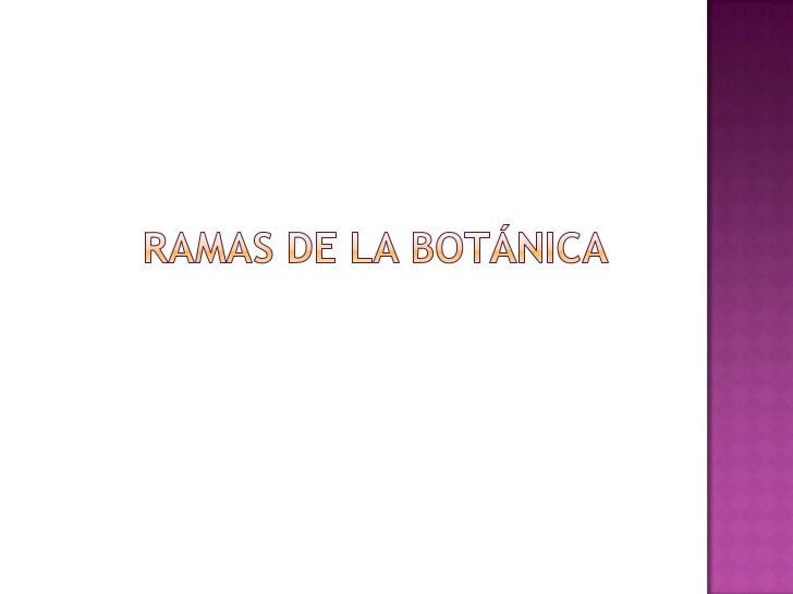 RAMAS DE LA BOTÁNICA<br />