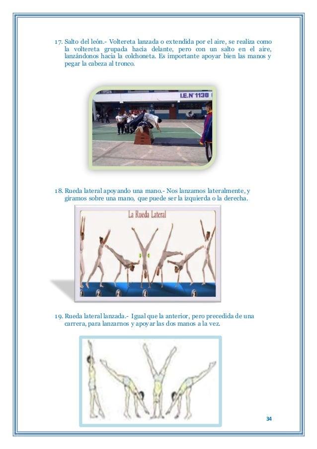 Monografia de gimnasia for Gimnasia concepto