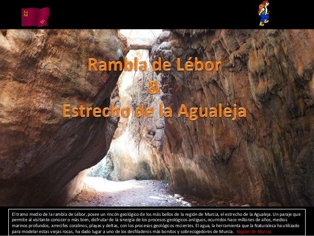 El tramo medio de la rambla de Lébor, posee un rincón geológico de los más bellos de la región de Murcia, el estrecho de l...