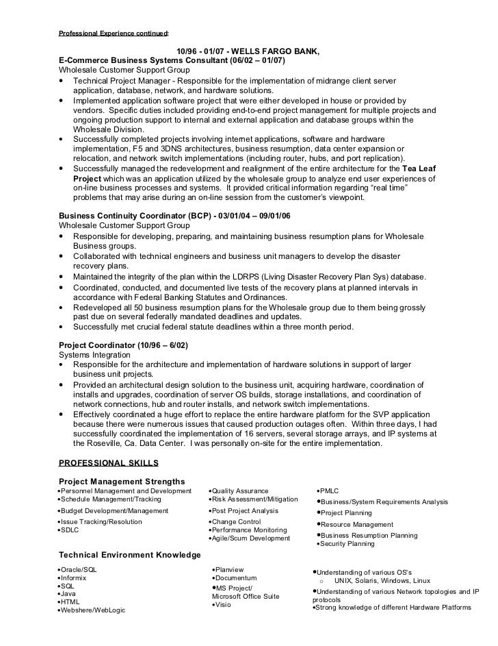 technology project manager resumes