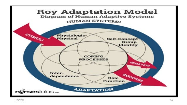 roy adaptation model pdf