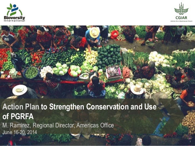 Action Plan to Strengthen Conservation and Use of PGRFA M. Ramirez, Regional Director, Americas Office June 16-20, 2014