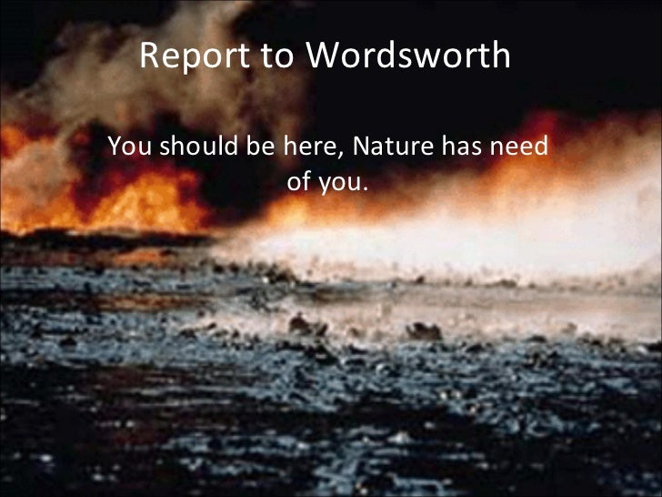 Report to Wordsworth You should be here, Nature has need of you.