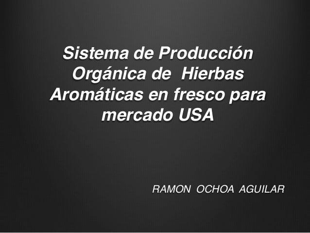 Sistema de Producción Orgánica de Hierbas Aromáticas en fresco para mercado USA! RAMON OCHOA AGUILAR! !