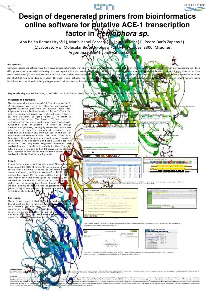Design of degenerated primers from bioinformatics                  online software for putative ACE-1 transcription       ...