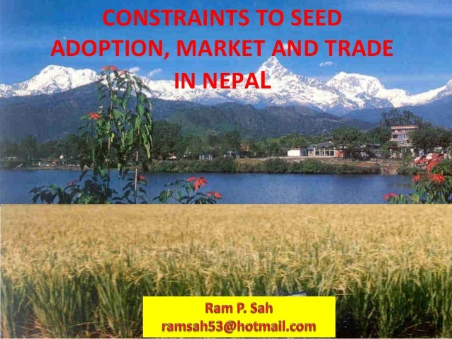 1 Ram P. Sah, Nepal Agriculture Research Council (NARC) Singh Durbar Plaza, Kathmandu CONSTRAINTS TO SEED ADOPTION, MARKET...