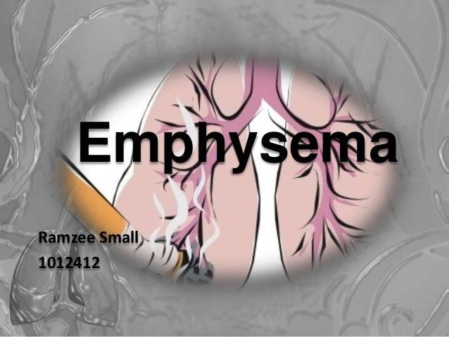 Emphysema Ramzee Small 1012412