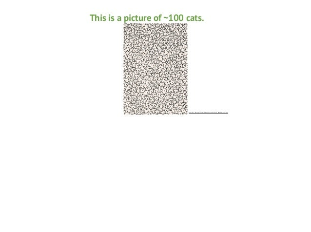 This is a picture of ~100 cats.  http://a1.s6img.com/cdn/0011/p/3123272_8220815_lz.jpg
