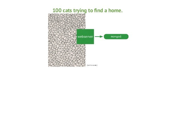 100 cats trying to find a home.  webserver  (not to scale)  mongod