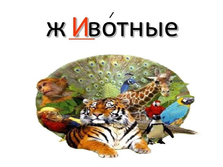 Большой театр г. Москва