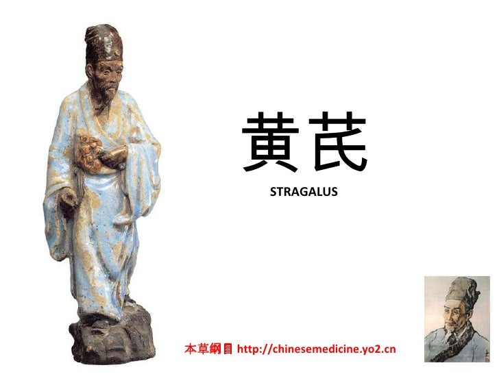 黄芪   STRAGALUS     本草纲目 http://chinesemedicine.yo2.cn