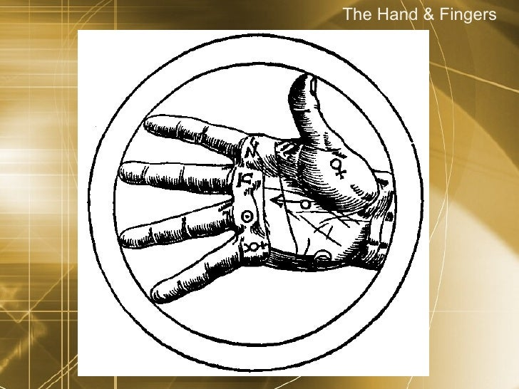 The Hand & Fingers
