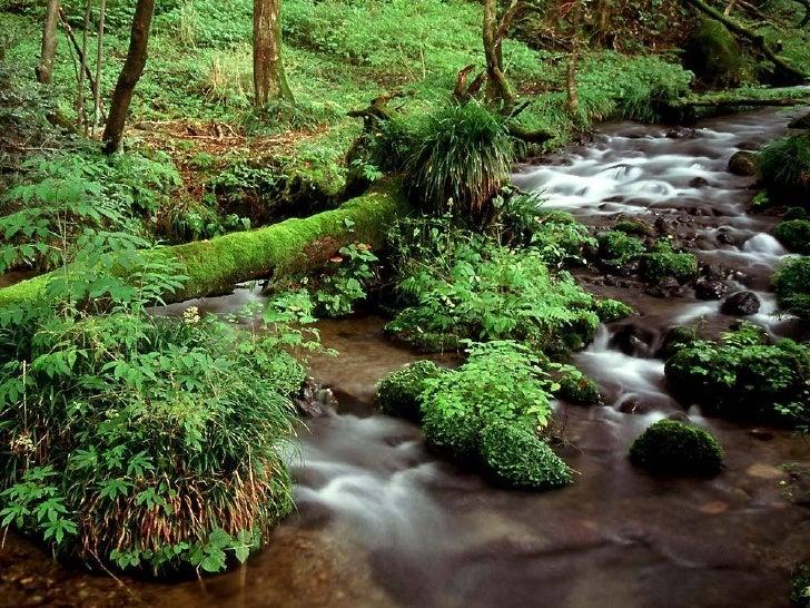 日本鄉野自然美景