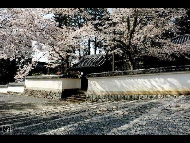 醍 醐 寺