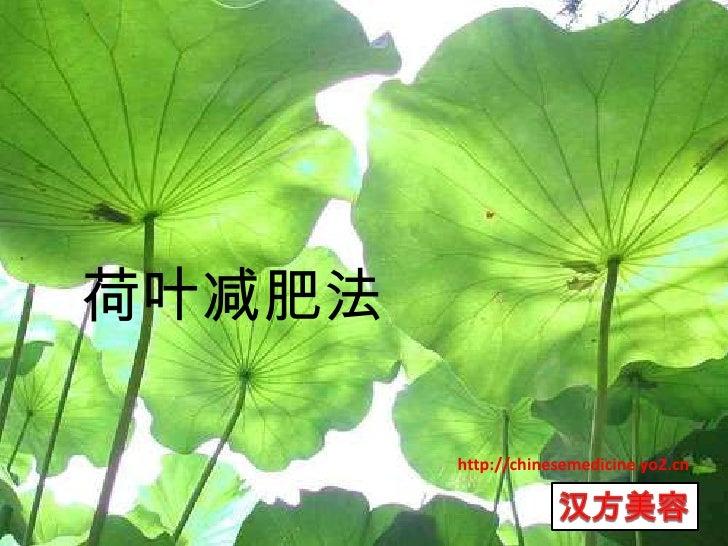 荷叶减肥法<br />http://chinesemedicine.yo2.cn<br />汉方美容<br />