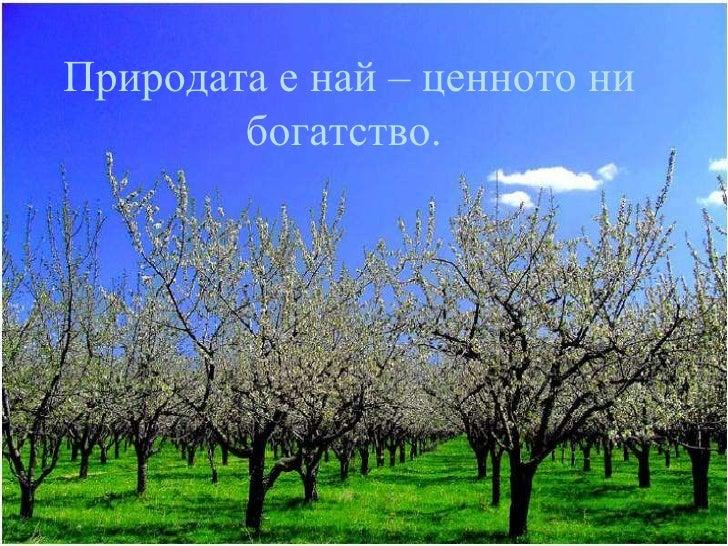 Природата е най – ценното ни богатство.