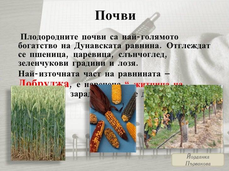 Почви <ul><li>Плодородните почви са най-голямото богатство на Дунавската равнина. Отглеждат се пшеница, царевица, слънчогл...