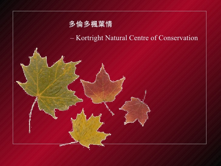 多倫多楓葉情 –  Kortright Natural Centre of Conservation