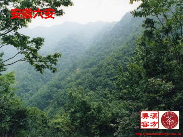 安徽六安 http://chinesemedicine.yo2.cn